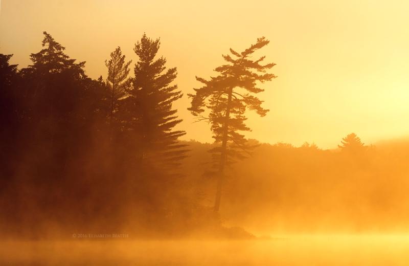 dsc_6689-lake-early-morning